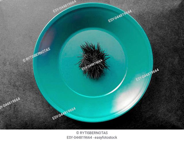 Black dried up sea urchin in green plate which placed on black background surface