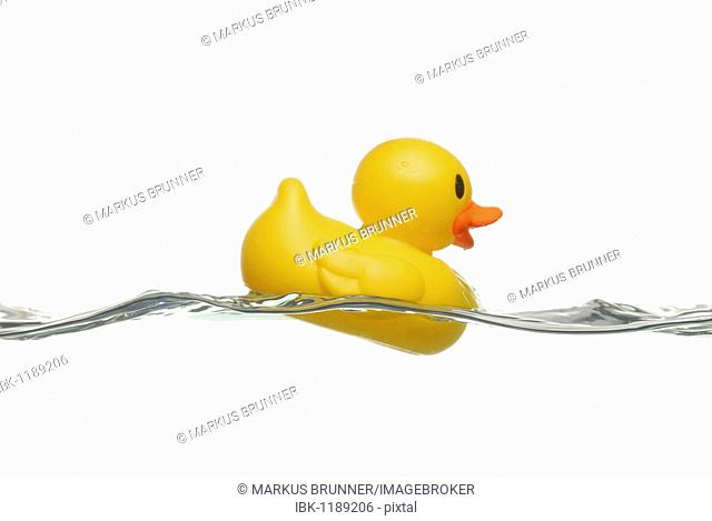 Duck in rough waves, symbolic picture for hard times