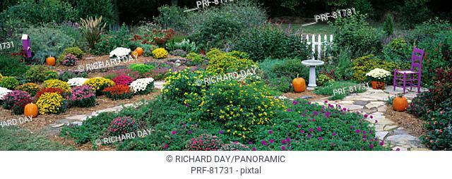 Fall Residential Garden