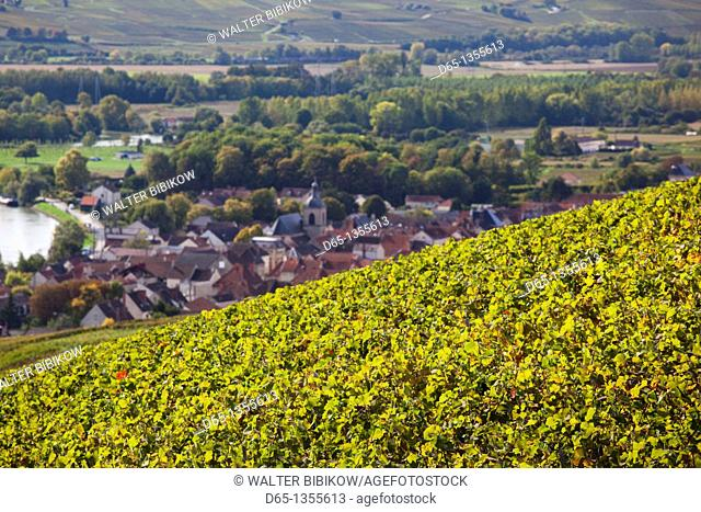 France, Marne, Champagne Region, Cumieres, town overview from vineyards