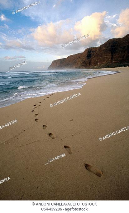Coast of Na Pali. Tracks on the beach. Kauai island. Hawaii