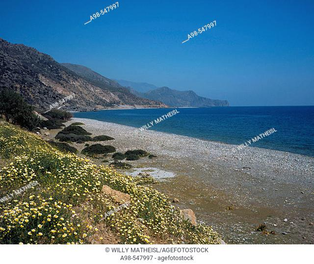 Lonely beach with daisies at Paleochora, south western Crete, Greece