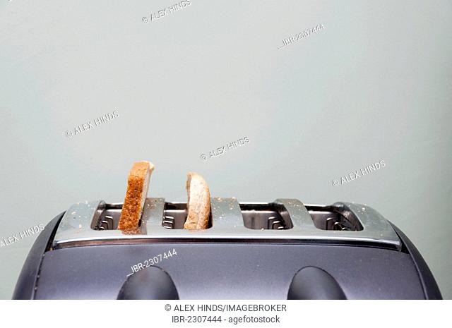 Slices of bread in a toaster