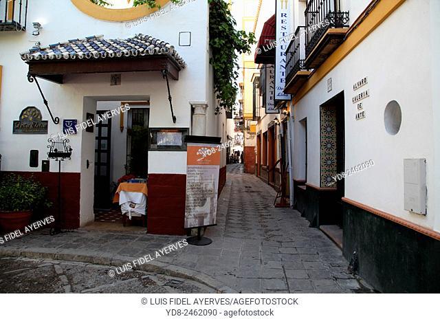 Typical street in Santa Cruz neighborhood, Seville, Spain