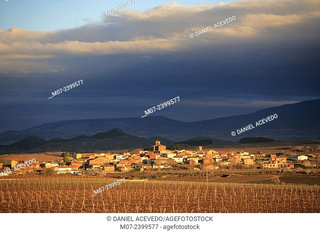 Azofra village, Camino de Santiago, Rioja wine region, Spain, Europe