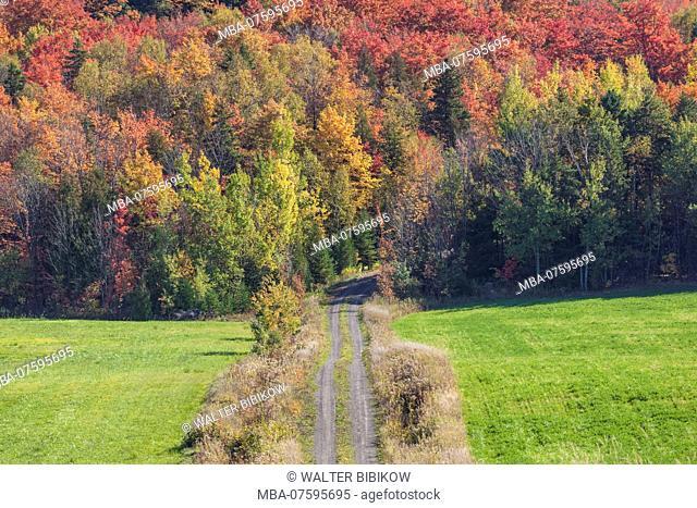 Canada, Quebec, Ile d'Orleans, Sainte-Famille, country road, autumn