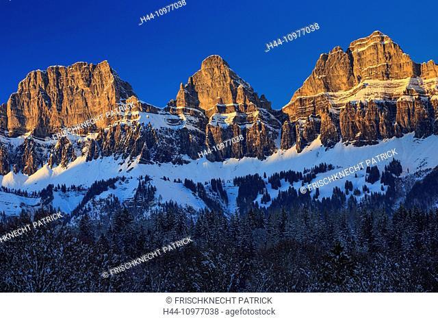 Alps, view, tree, mountain, mountain panorama, mountains, massif, Brisi, trees, Churfirsten, rock, cliff, spruce, spruces, mountains, Heidiland, sky, panorama