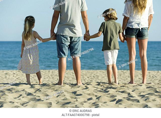 Family holding hands at the beach, rear view