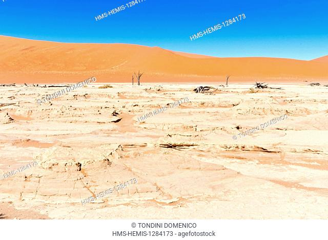 Namibia, Hardap region, Namib desert, Namib-Naukluft national park, Namib Sand Sea listed as World Heritage by UNESCO, Dead Vlei, Sossusvlei dunes