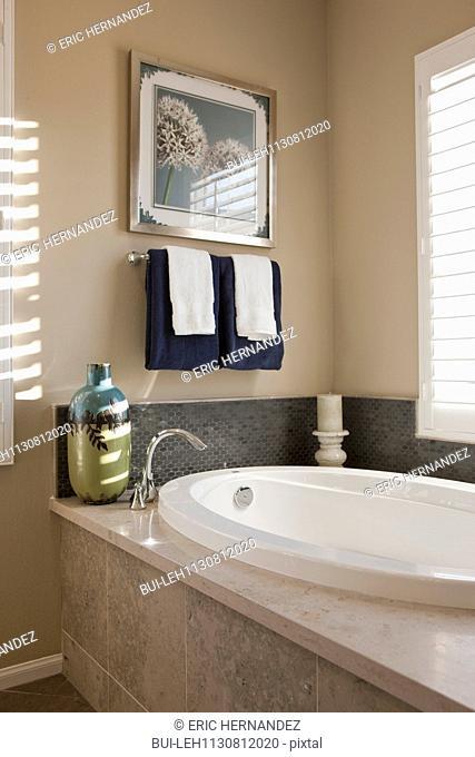 Bathtub in domestic bathroom; Valencia; California; USA