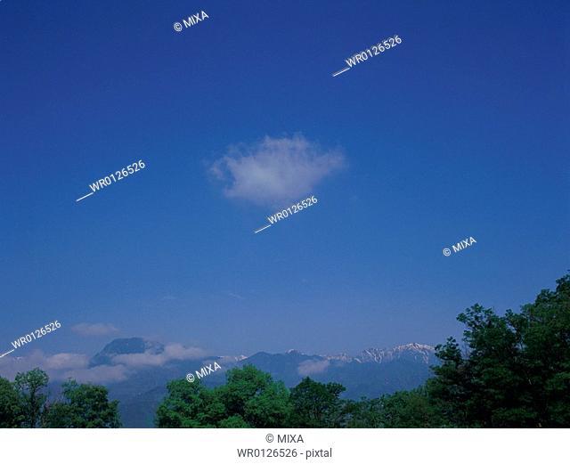 Trees and blue sky, Ikeda, Nagano Prefecture, Japan