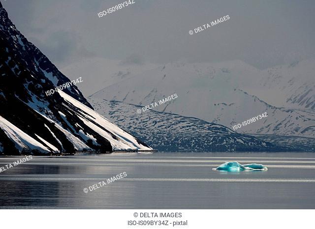 Grey calm day, Krossfjorden, Svalbard, Norway