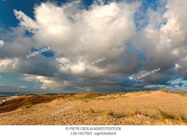 Curonian Spit  Lithuania  Thye second highest dunes in Europe 50m  A UNESCO World Heritage Site