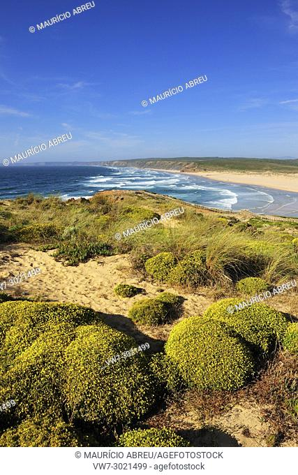The flora and the vastness of the coastline in the Sudoeste Alentejano and Costa Vicentina Natural Park. Algarve, Portugal