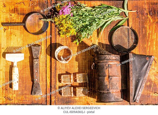 Overhead still life of wildflowers and rusty tools