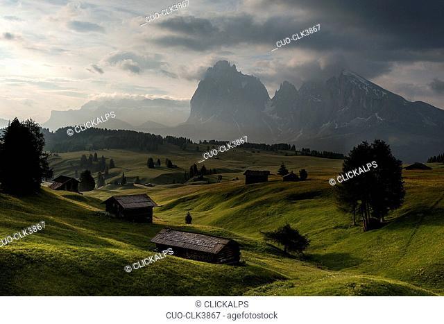 Early morning on the Alpe di Siusi/Seiser Alm. In the background the peaks of Sella, Sassolungo/Langkofel and Sassopiatto/Plattkofel, Alpe di Siusi, Dolomites
