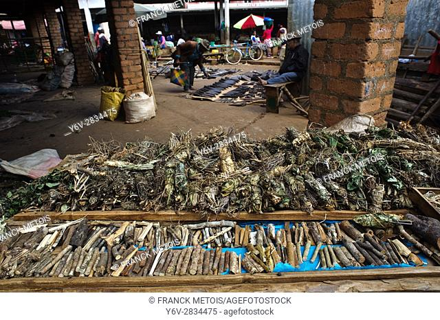 Pieces of wood and plants used in traditional medicine. They are on sale at the local market at Ambalavao ( Madagascar)