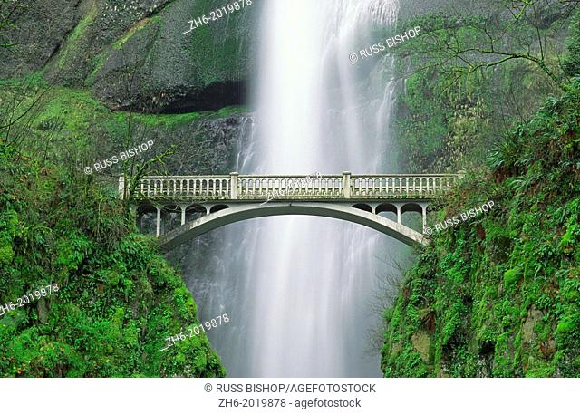 Multnomah Falls and bridge, Mount Hood National Forest, Columbia Gorge National Scenic Area, Oregon USA