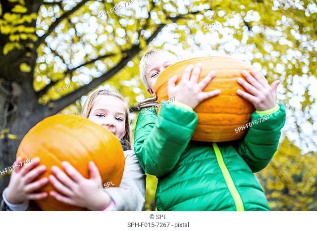 MODEL RELEASED. Children holding pumpkin in park, portrait, smiling