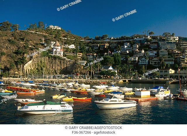 Homes on hill over Boats docked and anchored at Avalon Harbor. Avalon. Catalina Island. California. USA