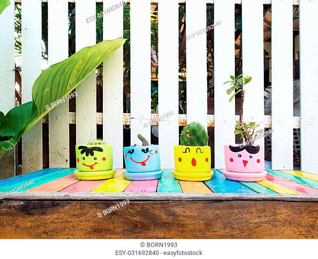 Cactus and ornamental pants in flowerpot on colorful wooden table in the garden
