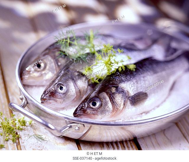bass in coarse sea salt