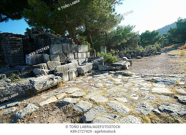 Priene. Ancient Greece. Asia Minor. Turkey