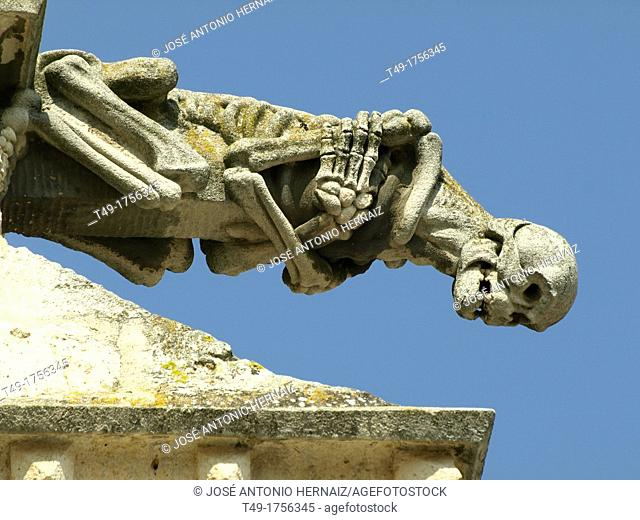 gargoyle of the cathedral of Palencia
