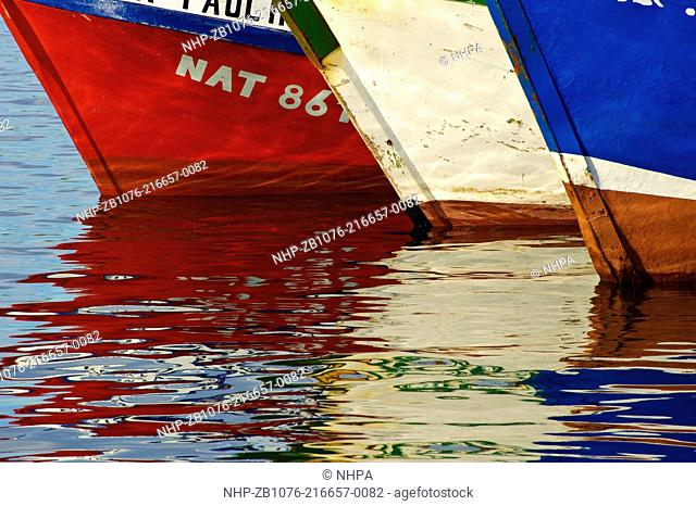 Colorful wooded fishing boats, new and old, are docked together in Puerto Natales, Chile Puerto Natales is an old fishing village in Chilean Patagonia located...
