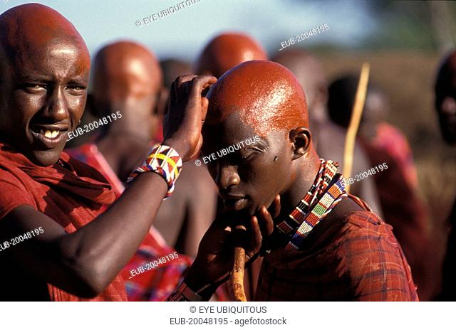 Maasai Moran cover their recently shaved heads with red ochre which signifies their coming into manhood during an initiation ceremony of their age sets