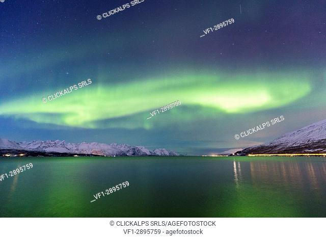 Northern lights over the fjord. Skivahollet, Kafjord, Lyngen Alps, Troms, Norway, Lapland, Europe