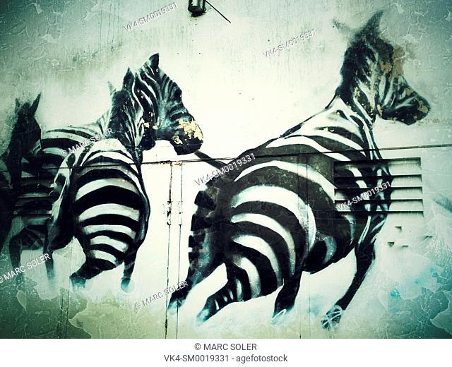 Zebra running, graffiti. Barcelona, Catalonia, Spain