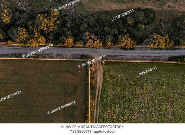 Aerial view of a rural road, Balearic Islands, Spain, Mallorca, Llucmajor