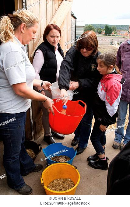 Visually-impaired people preparing feed for horses after riding lesson