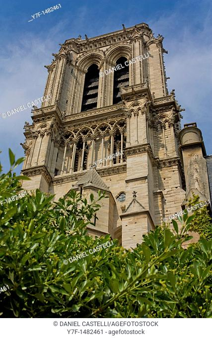 Notre Dame cathedral,Paris,France