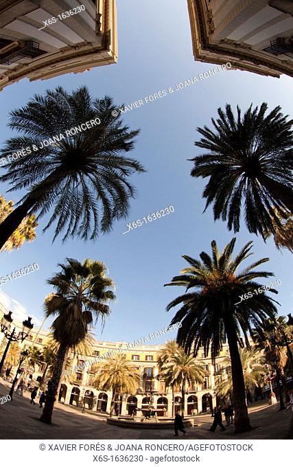 Plaça Reial - Royal Square - , Barcelona, Spain