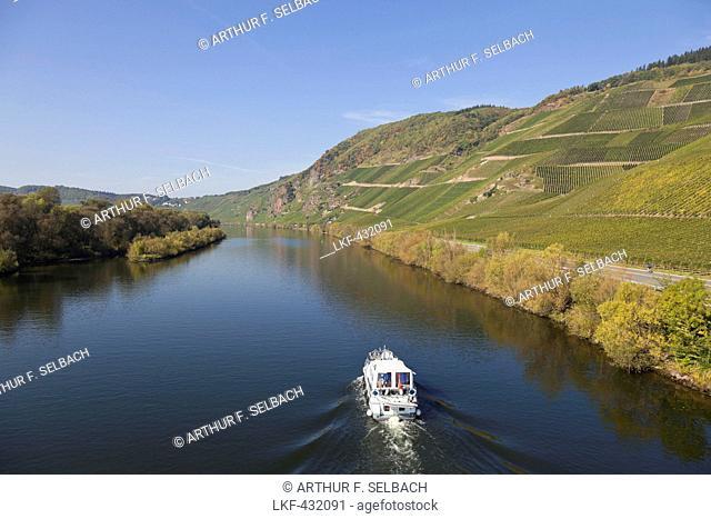 Loesnicher Foersterlay vineyards, Loesnich, Rheinland-Pfalz, Germany