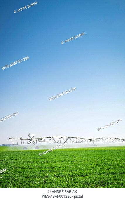 USA, Texas, Agricultural field mobile irrigation pipe system