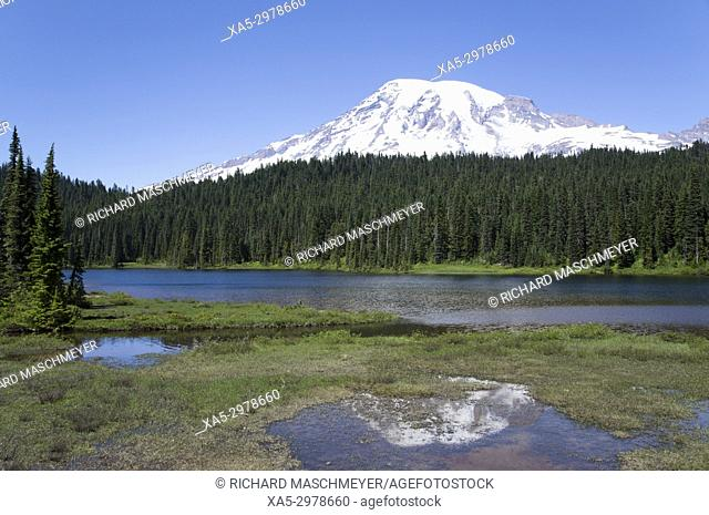 Reflection Lake, Mount Rainier Nation Park, Washington, USA