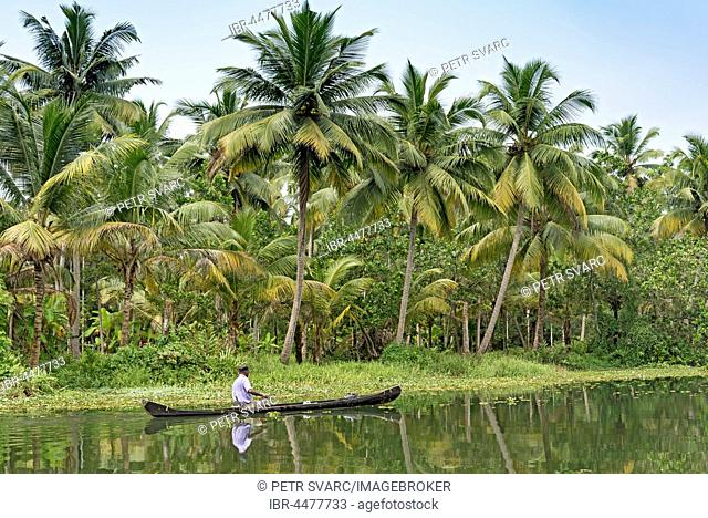 Boat on river, Backwaters, Kerala, India