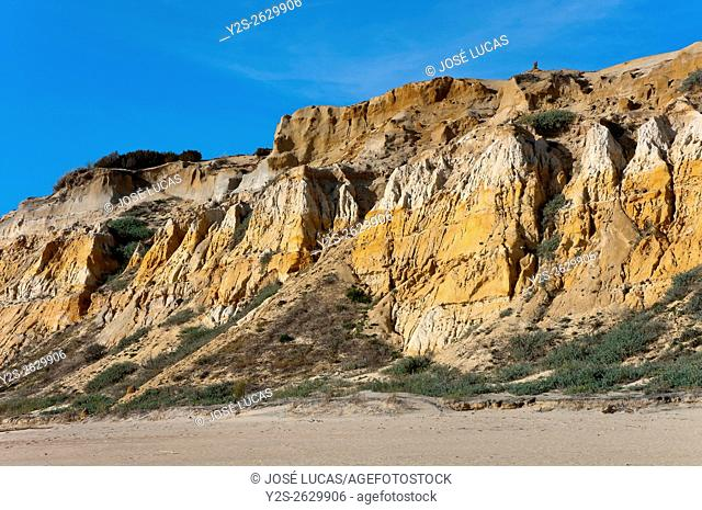 Natural Monument Cliffs of the Asperillo, Almonte, Huelva province, Region of Andalusia, Spain, Europe