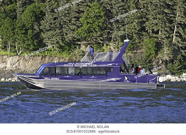 The commercial whale watching vessel 'Orca Odyssey', based in Juneau, Southeast Alaska, USA In the summer of 2006 this vessel struck a humpback whale while on a...