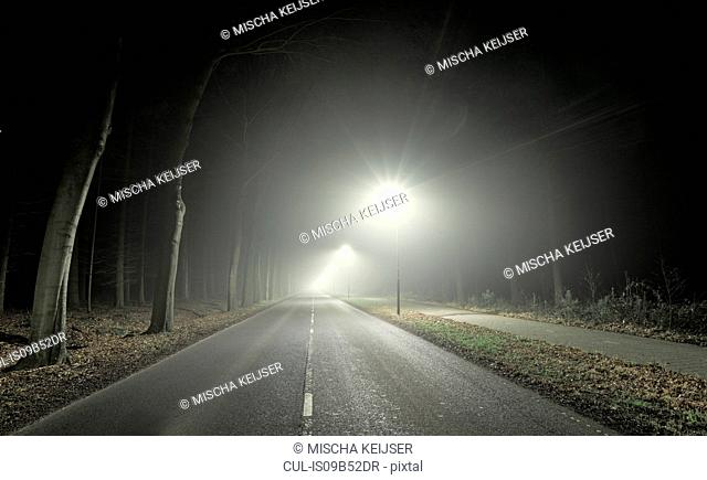 Road leading through forest, at night, Breda, Noord-Brabant, Netherlands
