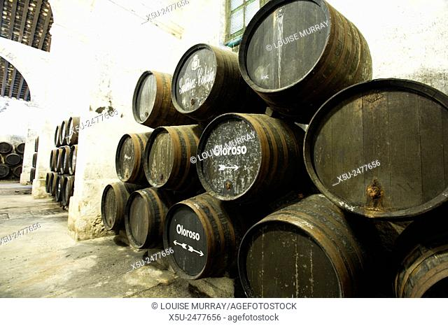 Sherry making in the Criadera e Solera method barrels three high in the bodega of Gutierrez Colosia