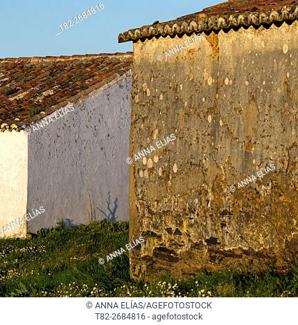 Facade detail field typical portuguese house, Alentejo, Portugal, Europe