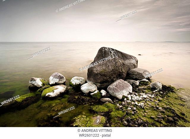 Erratic boulders on the shore of Bay of Greifswald, peninsula Mönchgut, Southeast Rügen Biosphere Reserve, Rügen Island, Mecklenburg-Western Pomerania, Germany