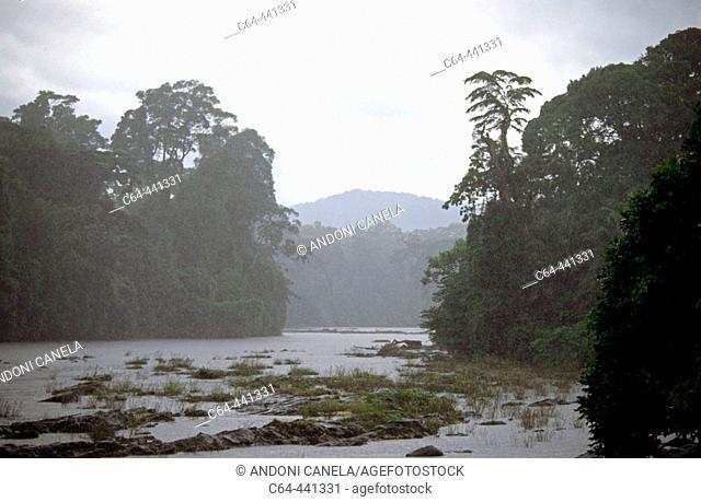 Korup, Cameroon