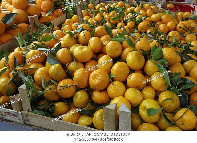 Oranges in Outdoor Market, Palermo, Sicily, Italy