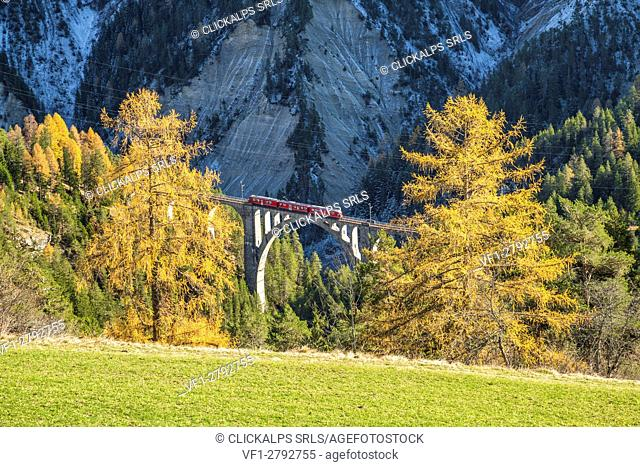 Bernina Express passes through Wiesner Viadukt surrounded by colorful woods Canton of Graubünden Switzerland Europe