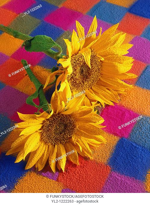 Stylised sunflowers with a textured covering against a patchwork backgound